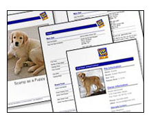 printed pages from the Top Tag Pet ID
